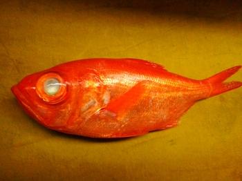 キラキラの金目鯛
